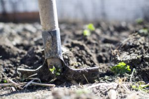 Digging in dirt