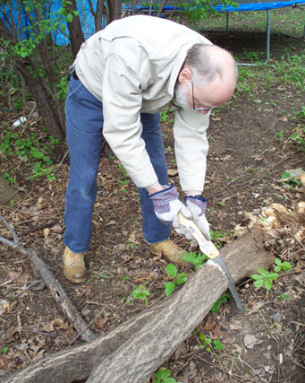 Using folding saw